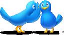 Twitter tips from an expert